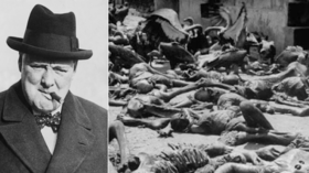 Labour's Lammy lambasted with history lesson after claiming Churchill was 'human rights pioneer' in Tory-bashing article