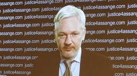 Possibility of Trump pardoning WikiLeaks' Assange sets social media alight after rumor about decision surfaces