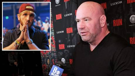 Begging: Logan Paul (inset) has implored UFC president Dana White not to associate brother Jake Paul's comments with him