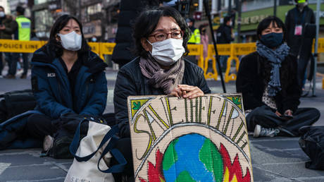 A protestor wearing a face mask displays a placard reading 'Save The Earth' during the climate crisis protest in Seoul.
