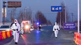'Not just a visa issue': China says 'preparatory work' needed for WHO visit to trace Covid-19 pandemic origin