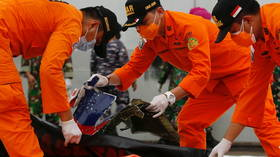 Indonesian divers find plane parts belonging to Boeing jet that plunged into Java Sea (VIDEO)
