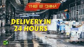 Delivery in 24 hours