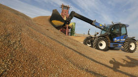 Sales of Russian wheat keep surging amid gloomy export forecasts
