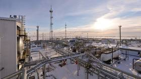 Russia to slash oil exports to curb rising domestic fuel prices – report