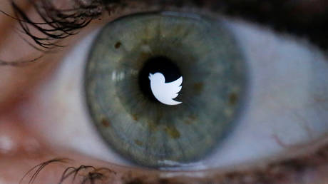 FILE PHOTO: An illustration picture shows the Twitter logo reflected in the eye of a woman