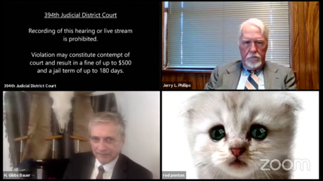 A screenshot of a court session in Brewster County, Texas © YouTube / 394th District Court of Texas - Live Stream