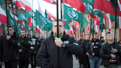 Nazi-saluting historian with far-right ties resigns as regional director of Polish institute tasked with probing Holocaust crimes