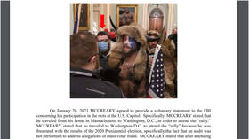 FBI unwittingly includes meme of NUDE MAN in court filing against Capitol rioter