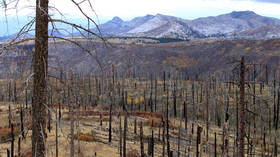 Los Alamos lab, birthplace of the atomic bomb, STILL under threat from wildfires despite repeated major incidents