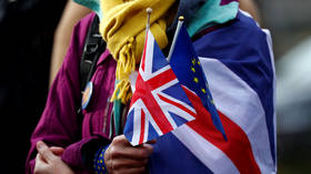 UK disappointed over EU's failure to acknowledge NI 'shock and anger' after triggering article 16, PM's spokesperson says