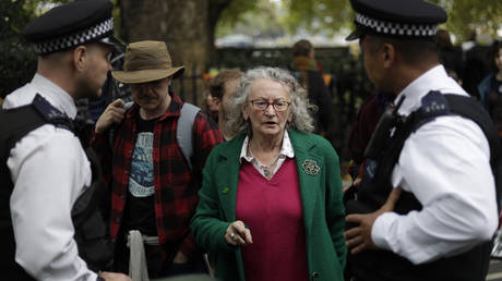 Jenny Jones, British politician and member of the Green Party talks to police officers as they arrest climate protestors who blocked a road in central London Monday, Oct. 7, 2019.