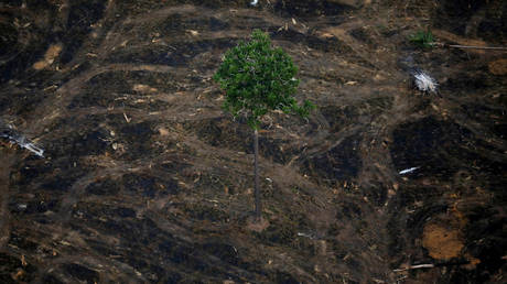FILE PHOTO. An aerial view shows a deforested plot of the Amazon near Porto Velho, Rondonia State, Brazil, September 17, 2019. Picture taken September 17, 2019. © Reuters / Bruno Kelly