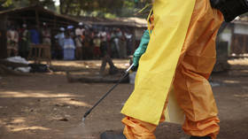 Guinea's neighbors 'not ready' for resurgent Ebola, says WHO, as risk of cross-border transmission 'very high' in West Africa