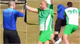 'Ban them': Fans call for SUSPENSIONS after players attack referee and chase him off in abandoned Bulgarian football match (VIDEO)