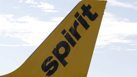 The incident took place on board a Spirit Airlines (file photo) flight