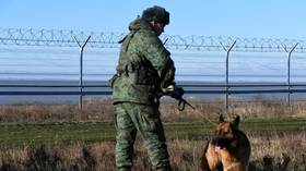 Russian army movements on border with Ukraine not a precursor of war, Kremlin says, citing need to defend against NATO buildup