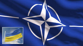 NATO has an open door policy, but Ukraine unlikely to walk through it any time soon, German officials say amid Donbass escalations