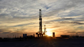 US production rebound will lead to new oil price war, shale executive says