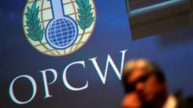 As chemical weapons watchdog's credibility crumbles, OPCW member states strip Syria's voting rights