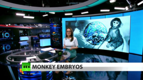 FULL SHOW: Scientists create early embryos that are part-human & part-monkey