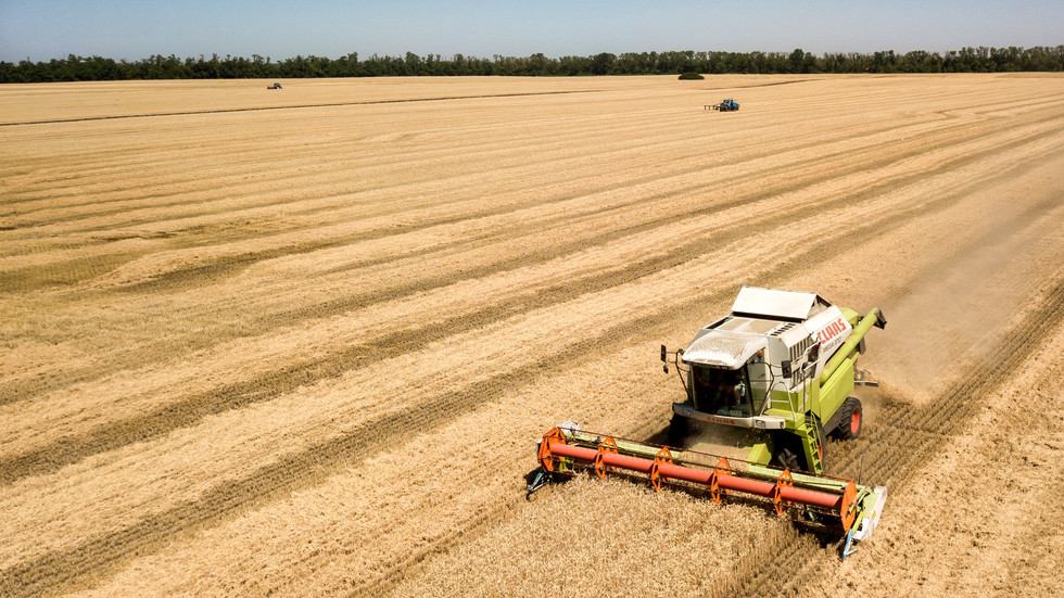 Russian farmers about to reap bumper grain harvest – USDA
