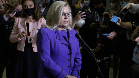 U.S. Representative Liz Cheney (R-WY) speaks to reporters after her removal as chair of the House Republican Conference on Capitol Hill in Washington, U.S., May 12, 2021 © REUTERS/Jonathan Ernst