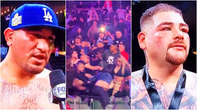 'So cringe': Punter punch-ups shame boxing as fans brawl during fight... before Arreola swears at judges over Ruiz Jr loss (VIDEO)