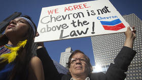 'Once a corporation is involved, justice goes out the window': Sarandon, Williamson rip into Chevron's hounding of lawyer Donziger