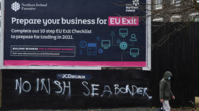UK PM Johnson 'disappointed' at EU attributing Northern Ireland issues to Brexit rather than trade protocol