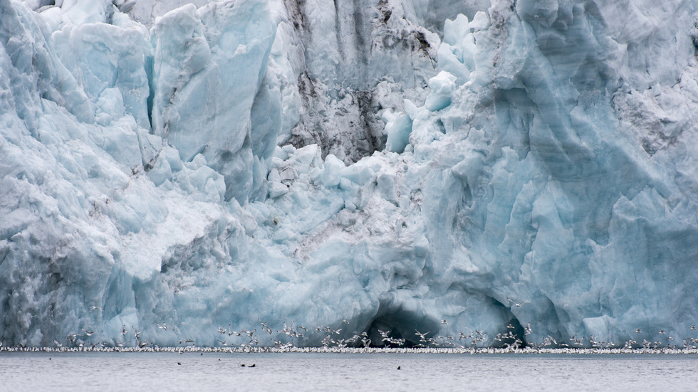 Arctic expedition chief warns we've 'set off the beginning of the explosion' of irreversible global warming