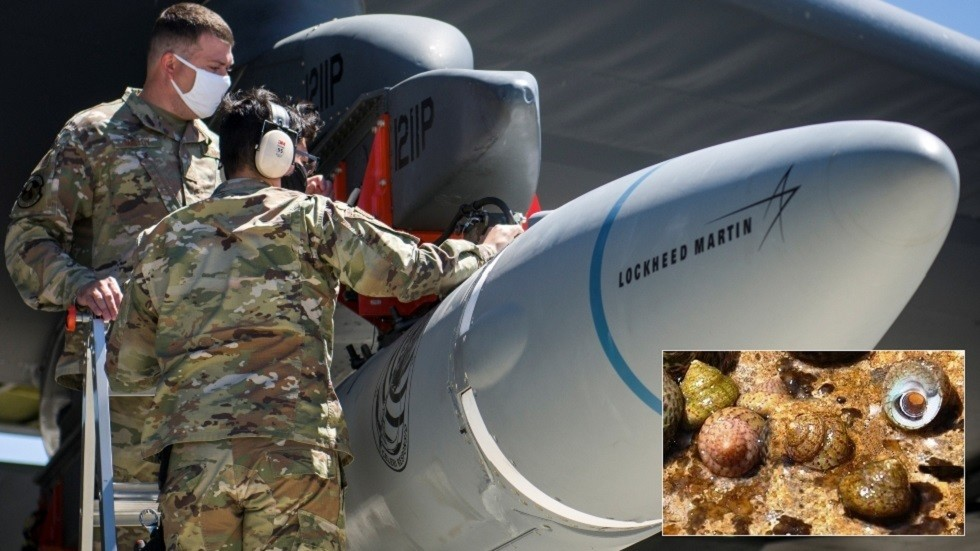 Four snails & 90 clams could be killed in upcoming hypersonic missile test, US Air Force warns