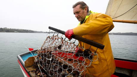 Oyster fisherman Adam Spargo in the Fal Estuary, Cornwall, Britain, December 30, 2020. Picture taken December 30, 2020