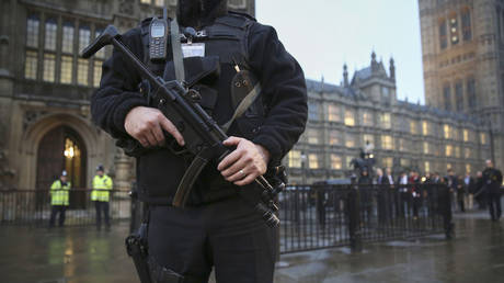 FILE PHOTO: An armed police officer stands outside the Houses of Parliament, central London November 26, 2014 © Reuters / Paul Hackett.
