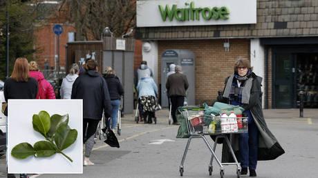 Shoppers visit a Waitrose supermarket in Frimley, south west of London on March 29, 2020. © Adrian DENNIS / AFP; (inset) Kaffir lime leaves. © Getty Images / Eskay Lim / EyeEm