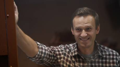 Russian opposition activist Alexei Navalny is pictured in a courtroom during a hearing on appellation to cancel the decision to replace his suspended sentence in the Yves Rocher fraud case with a real jail term at Babushkinsky Court, in Moscow, Russia.