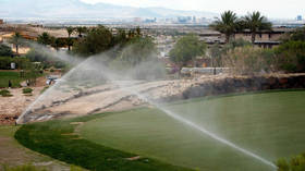 Nevada bans GRASS to battle drought, outlaws 31% of Las Vegas turf as 'non-functional'
