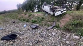 Ticked off: Family injured in horror car crash in remote Russian region after BLOOD-SUCKING INSECT crawled onto startled driver
