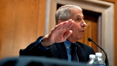 FILE PHOTO: Anthony Fauci speaks during a Senate hearing in Washington, DC.