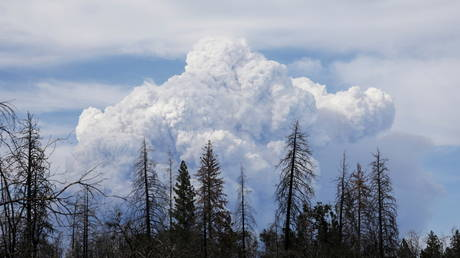 Smoke clouds rise as the Dixie Fire grows to over 18,000 acres in Plumas National Forest, California, July 18, 2021.