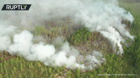 Russia's Aerial Forest Protection Service (Avialesookhrana)