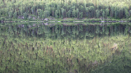 Taiga wood is reflected in the Yenisei River south of Russia's Siberian city of Krasnoyarsk.