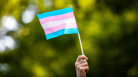 FILE PHOTO: An activist waves a transgender flag at a protest in New York City.