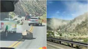 WATCH: Rocks tumble down Sierra Nevada mountains after 6.0 quake & dozens of aftershocks rattle northern California