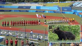 Bear with us: Olympic security 'on alert' as brown bear spotted 'on the loose' near softball stadium just hours before first game
