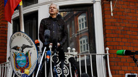 Decision to strip Assange of Ecuadorian citizenship hasn't come into force, his lawyer tells RT, while preparing an appeal