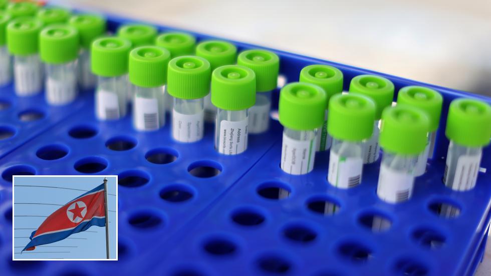 Nordkorea hat eine eigene PCR-Ausrüstung zum Testen auf Covid entwickelt, während es weiterhin keine Covid-Infektionen hat
