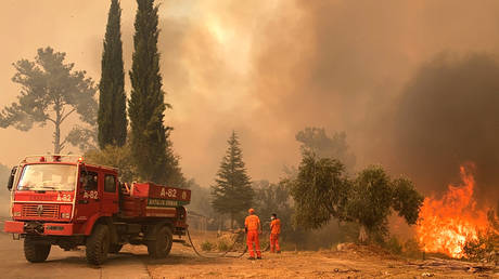 A firefighter battles with fire during a massive wildfire which engulfed a Mediterranean resort region on Turkey's southern coast near the town of Manavgat, on July 29, 2021. © AFP / Ilyas AKENGIN