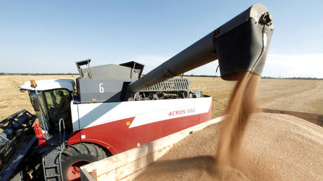 Russian agriculture exports surge 16% this year amid huge increase in deliveries to Europe