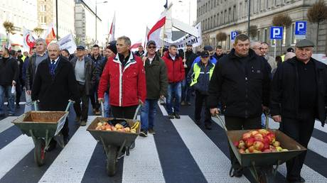 Polish farmers at a protest against the Russian ban on the import of their country's fruit and vegetables, Warsaw, Poland, November 4, 2014